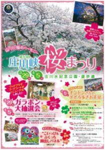 第10回庄川狭🌸桜まつり🌸開催のご案内!!3月29日→4月5日