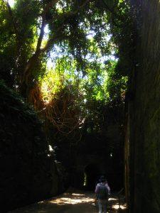 日本の無人島『猿島』へ