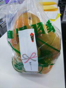 季節を感じた一日「呉羽の梨」を頂きました。