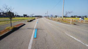 「道路の青い線」田園・湾岸サイクリングコース🚲☆彡