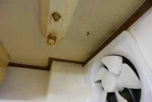 入居者トラブル解決編 「上階からの水漏れ」💦 いちご不動産 保険活用
